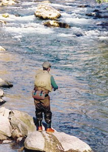 fly-fishing-guided-wade-trip
