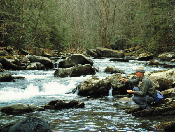 Trout fishing courses instruction trips fly fishing nc for Fishing in fayetteville nc