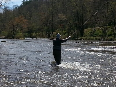 Tuckasegee fly fishing report for the smoky mountians for Cleveland fishing report