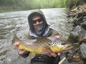 nantahala-brown-trout-trout-fishing-guided-wade-trip.jpg