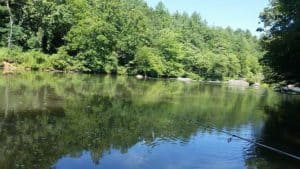 smokies-fly-fishing-guide-trips-smallmouth-bass-nc.jpg
