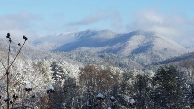 deep-creek-winter-fly-fishing-trips-smoky-mountains.jpg