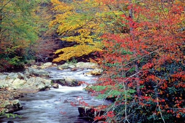 fall-trout-fishing-highlands-nc