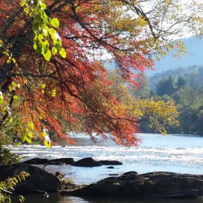 fall-fly-fishing-smokies-tuckasegee-river-bryson-city-nc