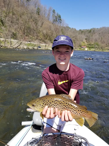 connor-tuck-dh-brown-trout-bryson-city-nc.jpg