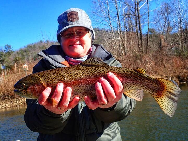 teresa malon trout fishing tuckasegee